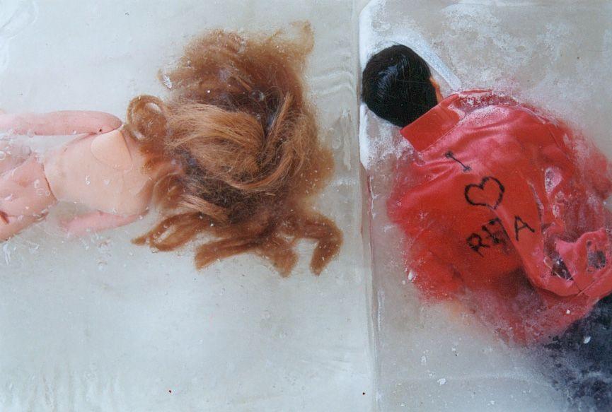 congelador 6 va